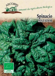 Semi di Spinacio Matador