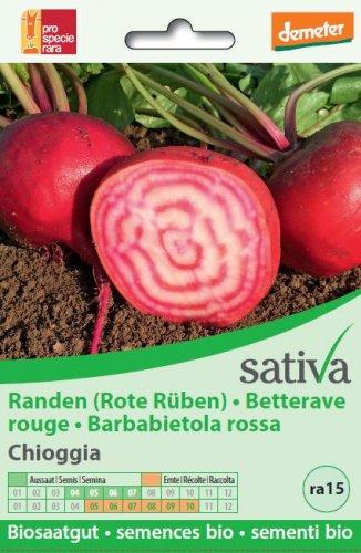 """Barbabietola Rossa """"Chioggia"""" - ra15"""