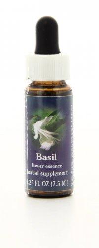 Basil - Essenze Californiane