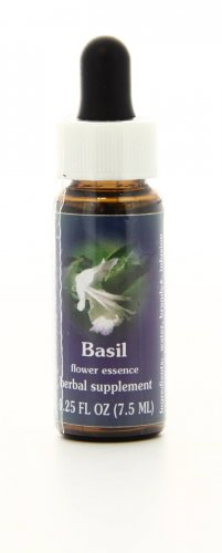 Basil - Essenze Californiane