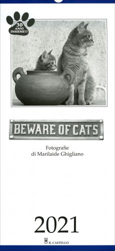 Beware of Cats - Calendario 2020