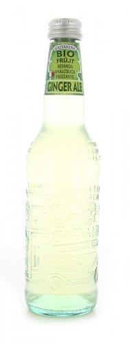 Ginger Ale in Bottiglia Bio