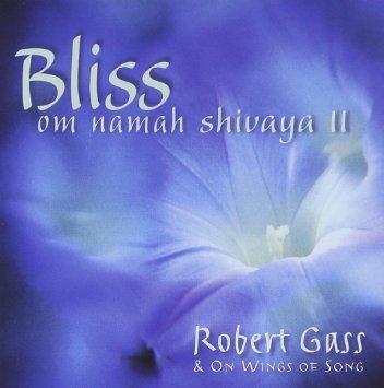 Bliss. Om Namah Shivaya 2