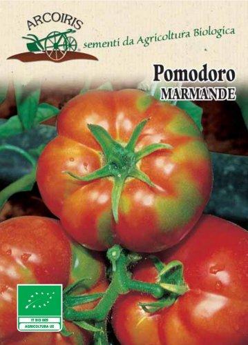 Semi di Pomodoro Marmande