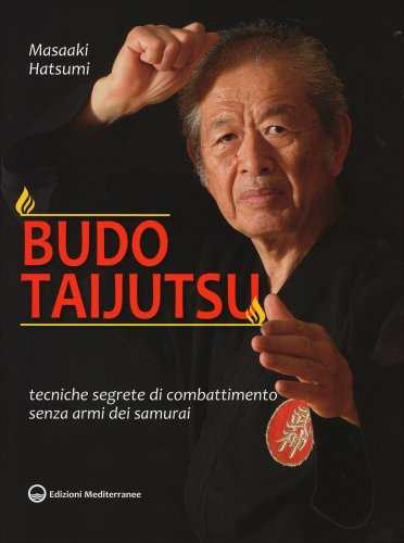 Budo Taijutsu