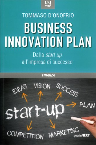 Business Innovation Plan