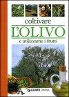 Coltivare l'Olivo e Utilizzarne i Frutti