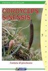 Cordyceps Sinensis (eBook)