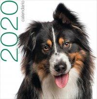 Calendario da Muro 2019 Cani