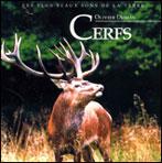 Cerfs