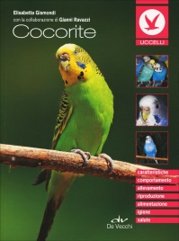 Cocorite