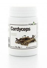 Cordyceps Integratore Naturale