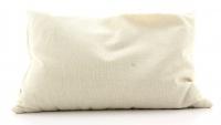 Cuscino Miglio - 40X80