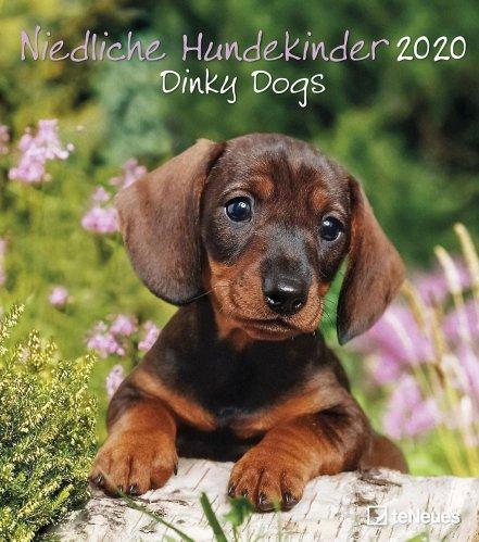 Calendario Dinky Dogs 2019