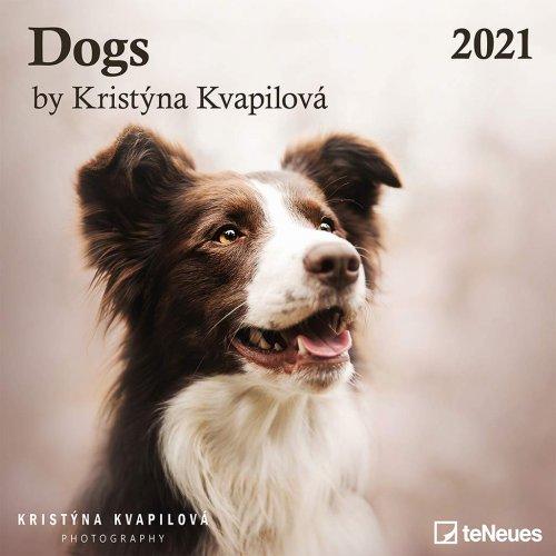 Calendario Dogs 2020