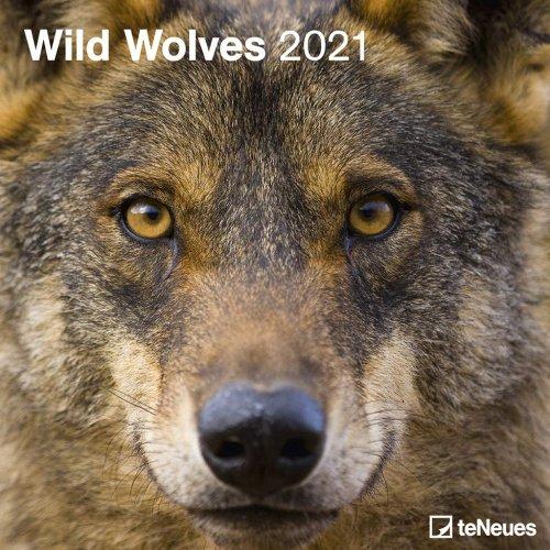 Calendario Wild Wolves 2019