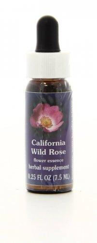 California Wild Rose - Essenze Californiane