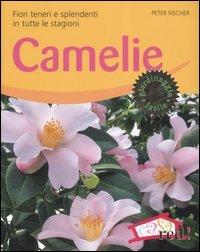 Camelie