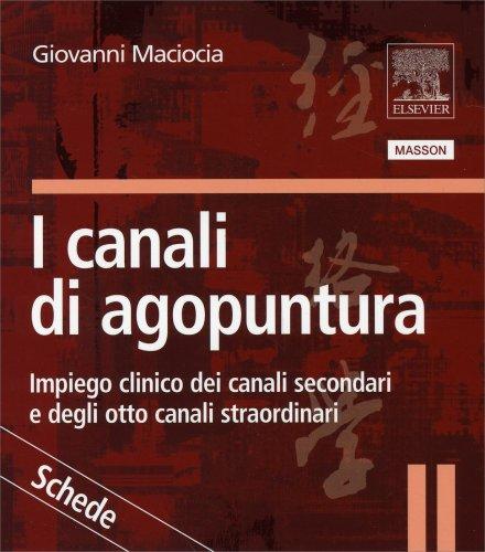 I Canali di Agopuntura - Schede