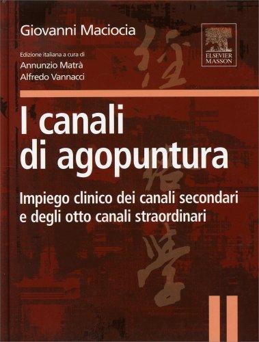 I Canali di Agopuntura