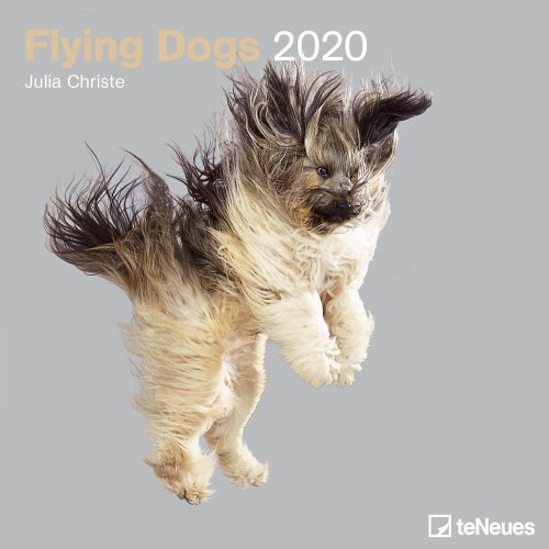 Calendario Flying Dogs 2020