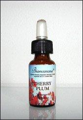 Cherry Plum - Visciola