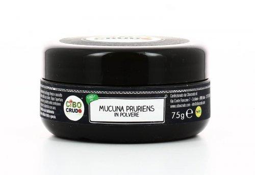 Mucuna Prurinens in Polvere Bio