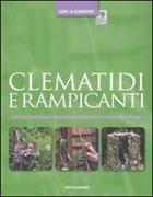 Clematidi e Rampicanti