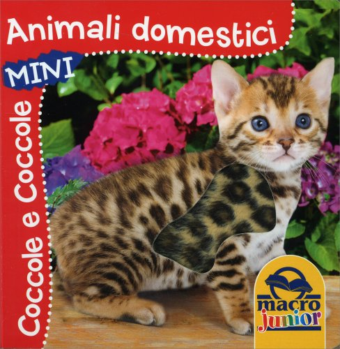 Coccole e Coccole Mini - Animali Domestici