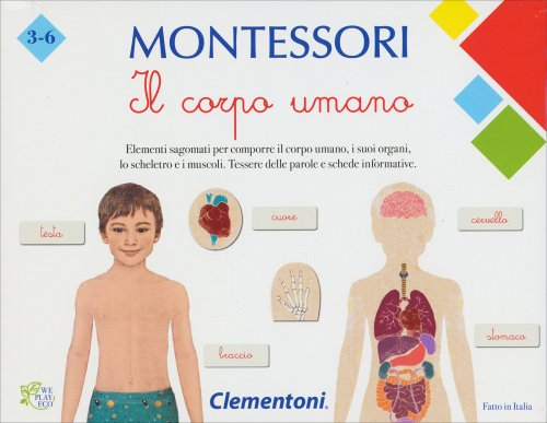 Il Corpo Umano - Montessori