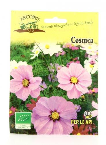 Semi di Cosmea - 0,5 G