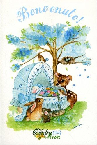 Countrymoon Card - Benvenuto! Bimbo & Animali
