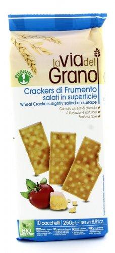 Crackers di Frumento Salati in Superficie