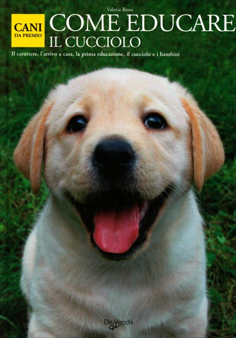 Come educare il cucciolo valeria rossi libro - Educare il cane a non salire sul divano ...