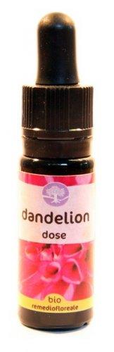 Dandelion Dose - Californiano