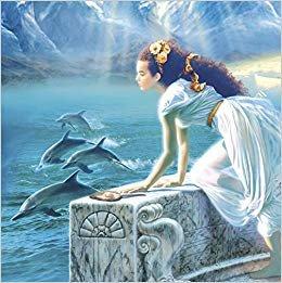 Dolphin Card 2