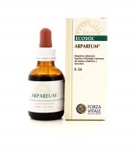 Arpareum - Forza Vitale