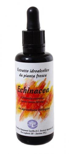 Echinacea Estratto Idroalcolico da Pianta Fresca