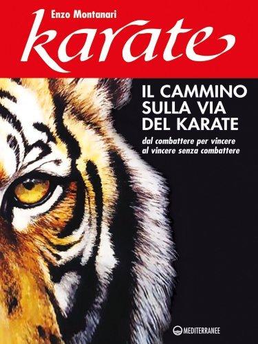 Il Cammino sulla Via del Karate (eBook)