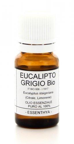 Eucalipto Grigio - Olio Essenziale