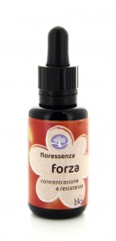 Forza - Floressenza