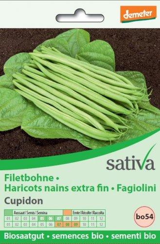 """Fagiolini """"Cupidon"""" - bo54"""