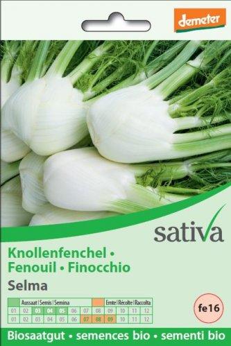 """Finocchio """"Selma"""" - fe16"""