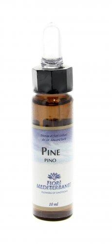 Pine - Pino - Fiori Mediterranei 10 ml.
