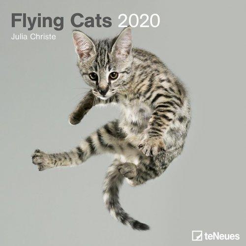 Calendario Flying Cats 2020