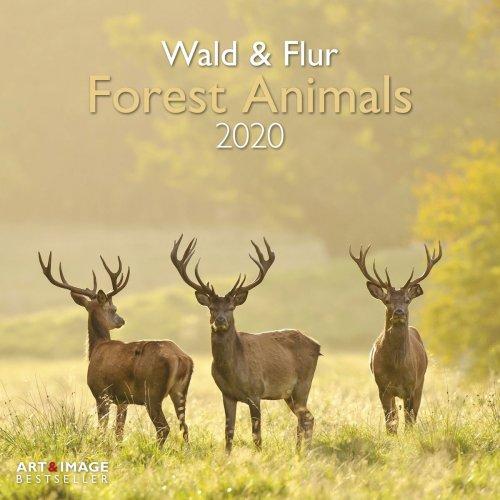 Calendario Forest Animals 2020