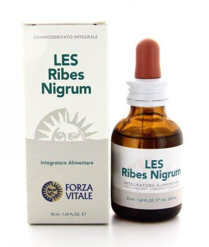 Les Ribes Nigrum