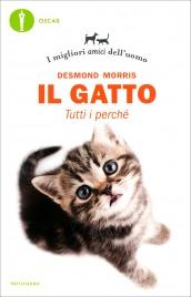 Il Gatto: Tutti i Perché
