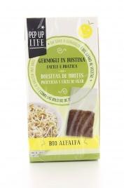 Germogli in Bustina Bio - Semi Alfa Alfa