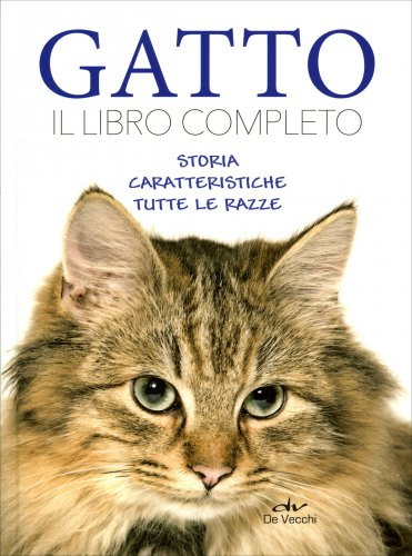 Gatto - Il Libro Completo